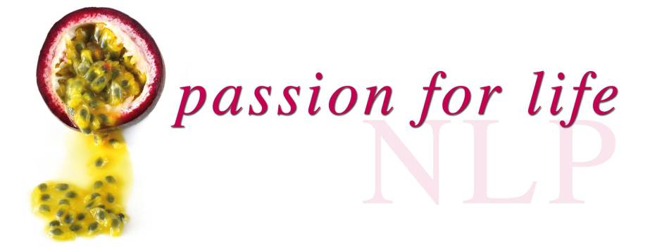 Passion for Life Big Banner Original color